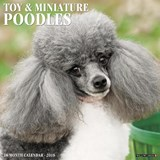 Just Toy & Miniature Poodles 2018 Wall Calendar (Dog Breed Calendar) | Willow Creek Press |