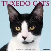 Tuxedo Cats 2018 Calendar