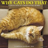 Why Cats Do That 2018 Calendar | Willow Creek Press |