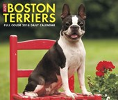 Just Boston Terriers 2018 Box Calendar (Dog Breed Calendar)