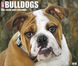 Just Bulldogs 2018 Calendar | Willow Creek Press |