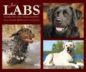 Just Labs 2018 Box Calendar (Dog Breed Calendar)