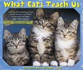 What Cats Teach Us 2018 Box Calendar