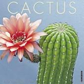 Cactus 2018 Calendar