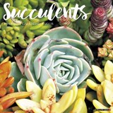 Succulents 2018 Calendar | Willow Creek Press |