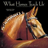 What Horses Teach Us 2018 Calendar | Willow Creek Press |