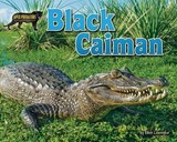 Black Caiman | Ellen Lawrence |