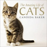 The Amazing Life of Cats | Candida Baker |