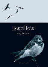 Swallow | Angela Turner |