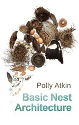 Basic Nest Architecture | Polly Atkin |