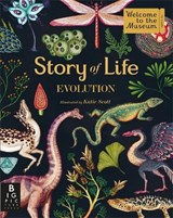 Story of life: evolution | Katie Scott |