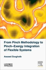 From Pinch Methodology to Pinch-Exergy Integration of Flexib | Assaad Zoughaib |