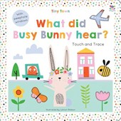 Tiny Town What Did Busy Bunny Hear? | Oakley Graham |