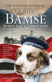 Sea Dog Bamse