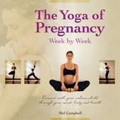The Yoga of Pregnancy Week by Week