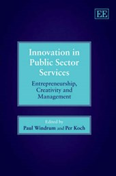 Innovation In Public Sector Services