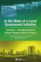 In the Wake of a Local Government Initiative