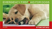 Emergency First Aid for Dogs | Martin Bucksch |