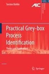 Practical Grey-box Process Identification