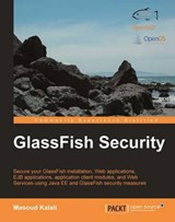 Glassfish Security | Masoud Kalali |