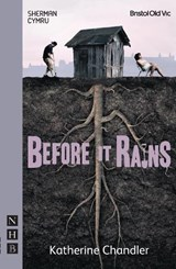 Before It Rains | Katherine Chandler |
