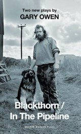 Blackthorn / In the Pipeline | Gary Owen |