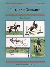 Poles and Gridwork | Jane Wallace |