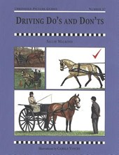 Driving Do's and Don'ts