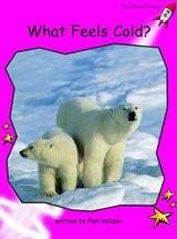 What Feels Cold? | Pam Holden |
