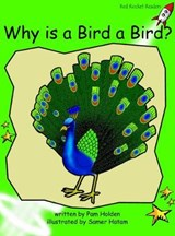 Why Is a Bird a Bird? | Pam Holden |