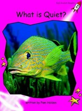 What Is Quiet?