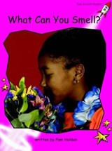 What Can You Smell? | Pam Holden |