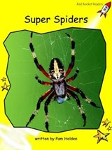 Super Spiders | Pam Holden |