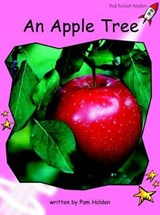 An Apple Tree | Pam Holden |