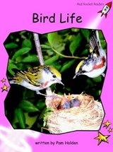 Bird Life | Pam Holden |
