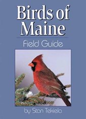 Birds of Maine Field Guide