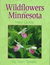 Wild Flowers of Minnesota | Stan Tekiela |
