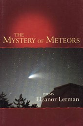 The Mystery of Meteors