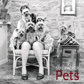 Pets | Sue Packer |