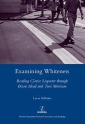 Examining Whiteness