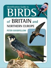Identification Guide to Birds of Britain & Northern Europe | Peter Goodfellow |