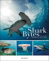 Shark Bytes - Tales of Diving With the Bizarre and  the Beautiful