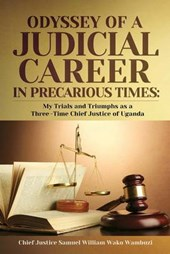 The Odyssey of a Judicial Career in Precarious Times