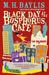 Black Day at the Bosphorus Cafe | M H Baylis |