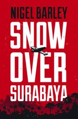 Snow over Surabaya | Nigel Barley |