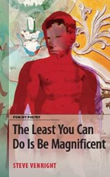 The Least You Can Do Is Be Magnificent | Steve Venright |