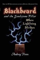 Blackbeard and the Sandstone Pillar, Book