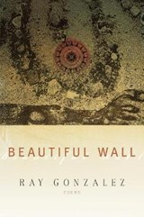 Beautiful Wall | Ray Gonzalez |