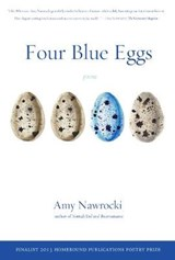 Four Blue Eggs | Amy Nawrocki |