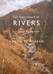 The Persistence of Rivers